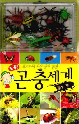 붕붕 곤충세계