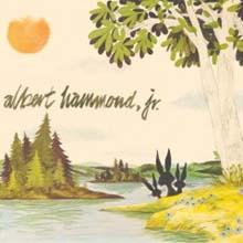 Albert Hammond Jr - Yours To Keep