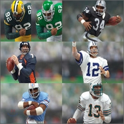 NFL ����� 3 : NFL LEGENDS SERIES 3 (7�� Ǯ��Ʈ)