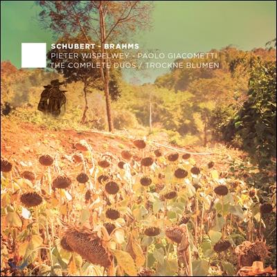 Pieter Wispelwey / Paolo Giacometti 슈베르트 / 브람스: 첼로와 피아노를 위한 작품 전곡 2집 (Schubert - Brahms: The Complete Duos / Trockne Blumen)