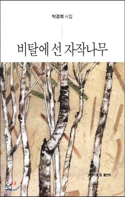 비탈에 선 자작나무