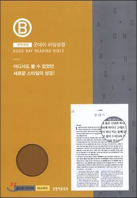굿데이 리딩성경 (중단본/무지퍼/색인/개역개정/머스타드)