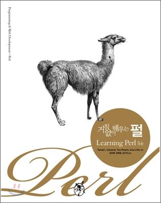 거침없이 배우는 펄