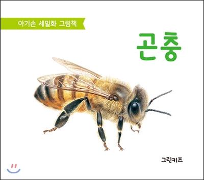 아기손 세밀화 그림책 : 곤충