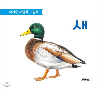 아기손 세밀화 그림책 : 새