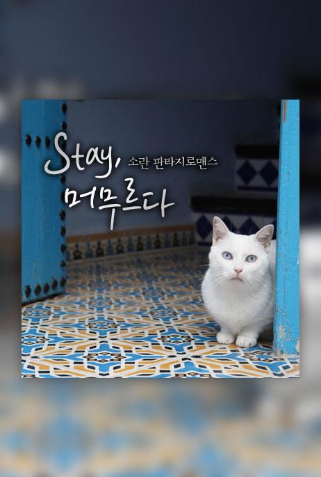 stay, 머무르다