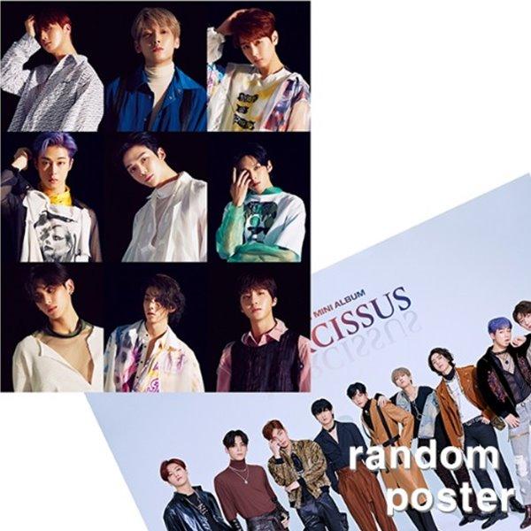 [주로파][포스터] 에스에프나인 (SF9) / 미니앨범 6집 NARCISSUS (예뻐지지 마) 브로마이드 1장 + 지관통