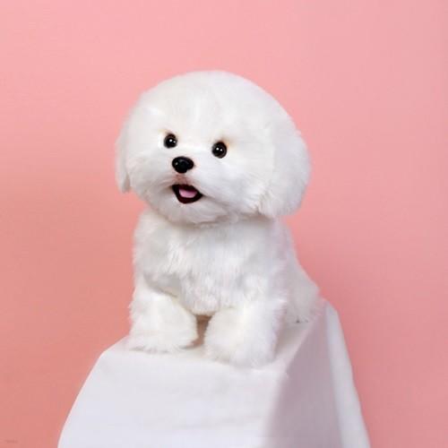 위더펫 리얼 강아지 인형 비숑 프리제